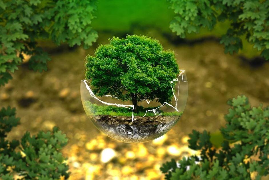 Rechtliche Hilfe bei Fragen des Umweltrechtes